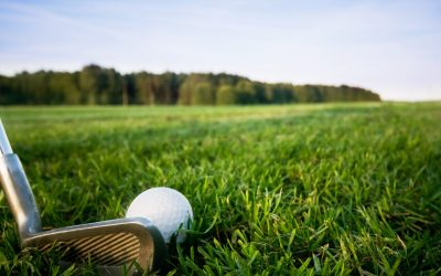 Pitch and Putt Golf bij Landal Orveltemarke